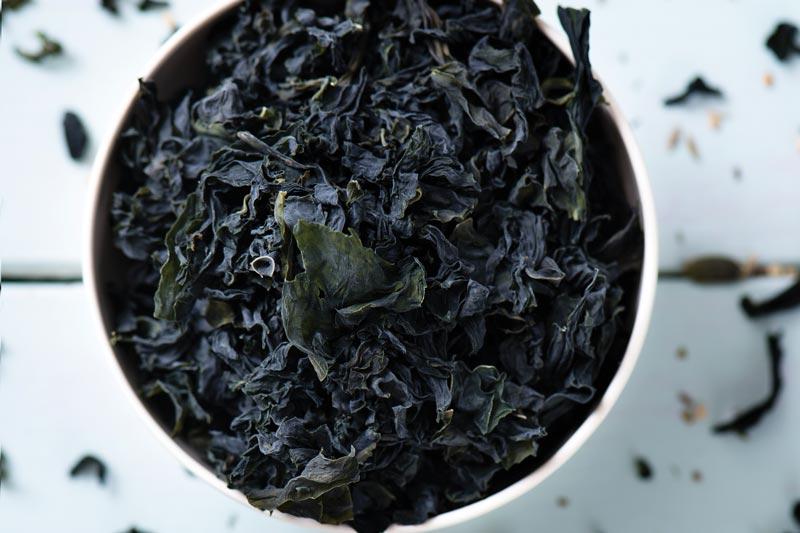 Seaweed Season